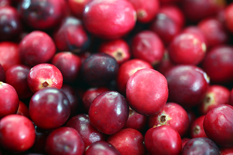 File:Cranberries20101210.jpg