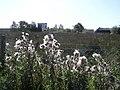Cranny Townland - geograph.org.uk - 1497426.jpg