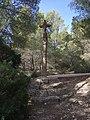 Creu del Camí de Gràcia.jpg