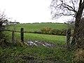 Crockavanny Townland - geograph.org.uk - 1569065.jpg