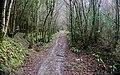Croix de Millet hike, France 02.jpg