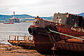 Cromarty Firth, Scotland, 18 April 2011 - Flickr - PhillipC (1).jpg