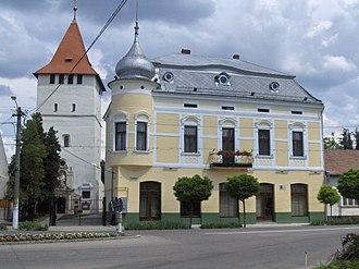 Bihor County - Salonta