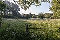 Dülmen, Naturschutzgebiet -Karthäuser Mühlenbach- -- 2014 -- 0218.jpg
