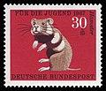 DBP 1967 531 Jugend Hamster.jpg