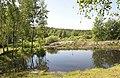 DSC0808 Міжрічинський регіональний ландшафтний парк.jpg