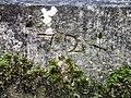 Date sur le piédestal de la croix d'Andornay.jpg
