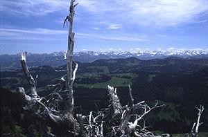 Allgäu Alps - The main chain of the Allgäu