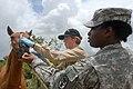 Defense.gov News Photo 070623-N-8704K-101.jpg