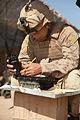 Defense.gov photo essay 091102-M-6237R-029.jpg