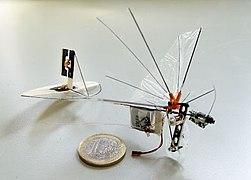 DelFly Micro 2008 V1.jpg