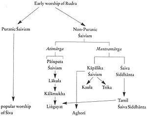 Aghori - The Aghori in Shaivism.