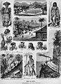 Die Gartenlaube (1883) b 173.jpg