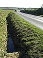 Ditch beside the B3262 - geograph.org.uk - 731956.jpg
