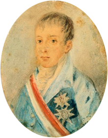 Painting showing the head and shoulders of a boy wearing a high collar and a coat adorned with medals and a striped sash of office