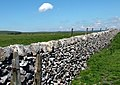 Dry Stone Wall - geograph.org.uk - 1369739.jpg