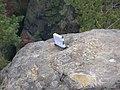 Dscn3644 - panoramio.jpg