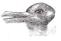 Kuhn used the duck-rabbit optical illusion to demonstrate the way in which a paradigm shift could cause one to see the same information in an entirely different way.