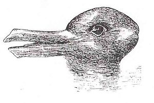 The duck-rabbit, made famous by Wittgenstein