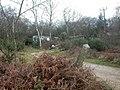Dudmoor Lane, caravans - geograph.org.uk - 1126361.jpg
