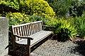 Dunedin Botanic Garden kz13.jpg