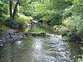 East Lyn River - geograph.org.uk - 1306034.jpg