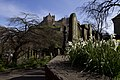 Edinburgh Castle - View From a Cemetery.jpg