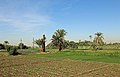 Egyptian Countryside R07.jpg