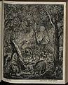 Elephantographia Curiosa 129.jpg