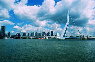 Erasmusbrug - The Erasmus Bridge in Rotterdam