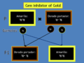 Esquema Gen InhibitorOfGold2.png