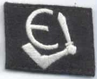 German occupation of Estonia during World War II - Divisional insignia of 20th Waffen Grenadier Division of the SS (1st Estonian)