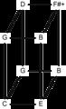 Euler genus 335.png