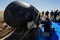 Expedition 62 Soyuz Landing (NHQ202004170027).jpg