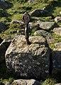 Eylesbarrow Cobra - geograph.org.uk - 1513561.jpg