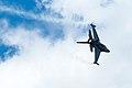 F16 - Fighting Falcon - USAF (4891336153).jpg