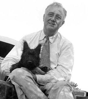 Fala (dog) - FDR with Fala (August 8, 1940)