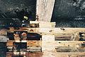 FEMA - 4940 - Photograph by Jocelyn Augustino taken on 09-21-2001 in Virginia.jpg
