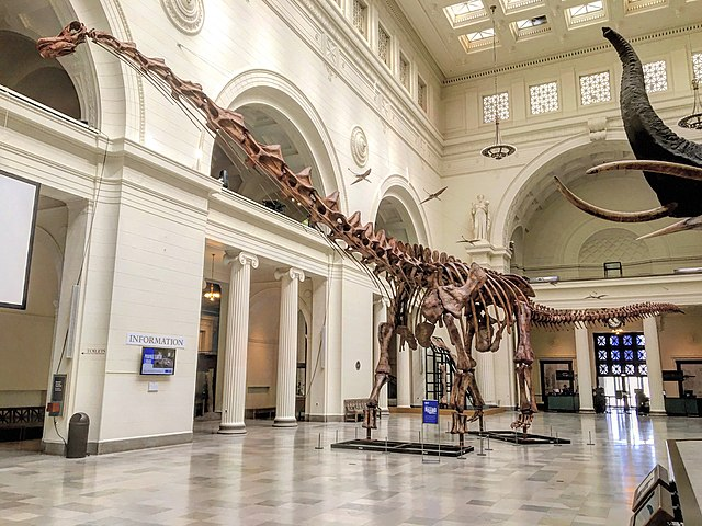 Titanosaurio, Patagotitan