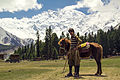 Fairy Meadows Polo.jpg