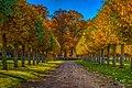 Fall trees at Ulriksdals Slott - panoramio (1).jpg