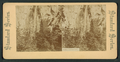 Falls of Bridal Veil, from Robert N. Dennis collection of stereoscopic views.png