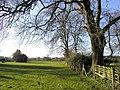 Farm Footpath - geograph.org.uk - 312217.jpg