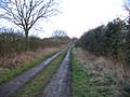 Farm track, Wellingham, Norfolk - geograph.org.uk - 123719.jpg