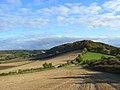 Farmland, Saunderton - geograph.org.uk - 1024124.jpg
