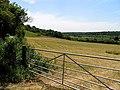 Farmland near Gatehampton Manor - geograph.org.uk - 21265.jpg