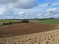 Farmland on the downs near Lambourn - geograph.org.uk - 726110.jpg