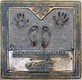 Felix Baumgartner-001.jpg
