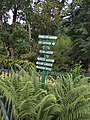 Fern garden and the board showing directions.jpg