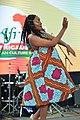 FestAfrica 2017 (36905222263).jpg